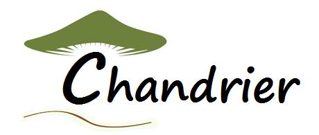 logochandrier